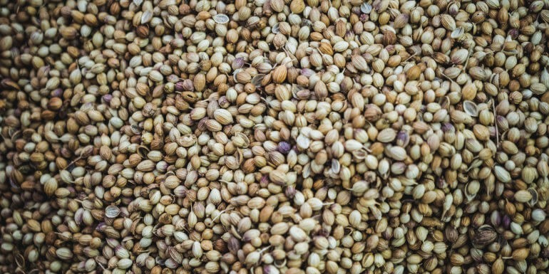 Mejores variedades de semillas a granel de 2021