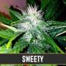 Sweety Auto (Blimburn Seeds)