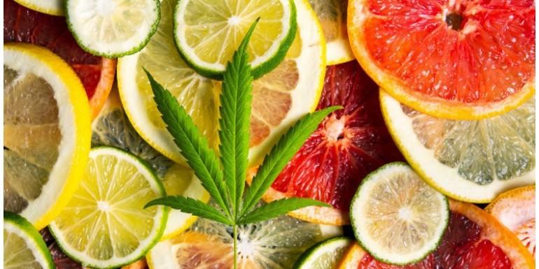 Las 10 mejores variedades de marihuana con sabor cítrico