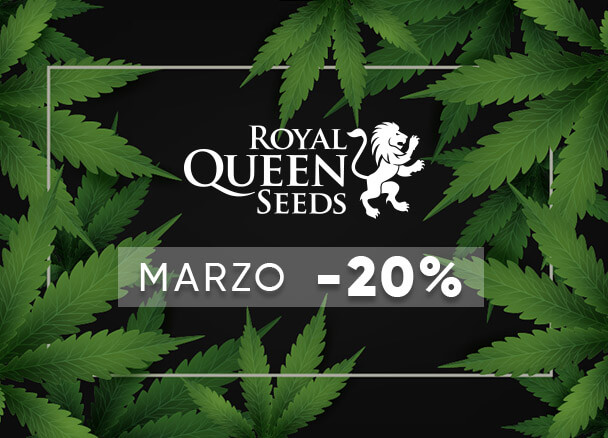 Royal Queen 20%