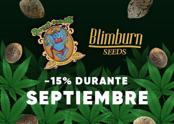 Sweet Sedds y Blimburn Seeds 15% Septiembre